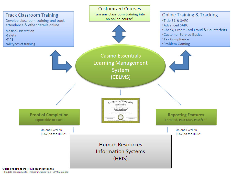 course management system ( Class Diagram (UML))